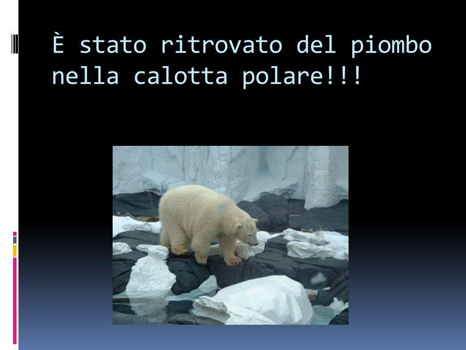 È stato ritrovato del piombo nella calotta polare!!!