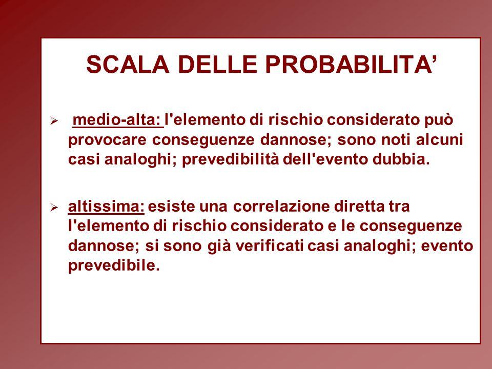 SCALA DELLE PROBABILITA'  medio-alta: l elemento di rischio considerato può provocare conseguenze dannose; sono noti alcuni casi analoghi; prevedibilità dell evento dubbia.
