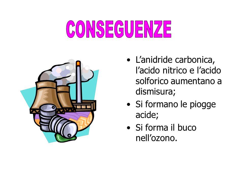 L'anidride carbonica, l'acido nitrico e l'acido solforico aumentano a dismisura; Si formano le piogge acide; Si forma il buco nell'ozono.