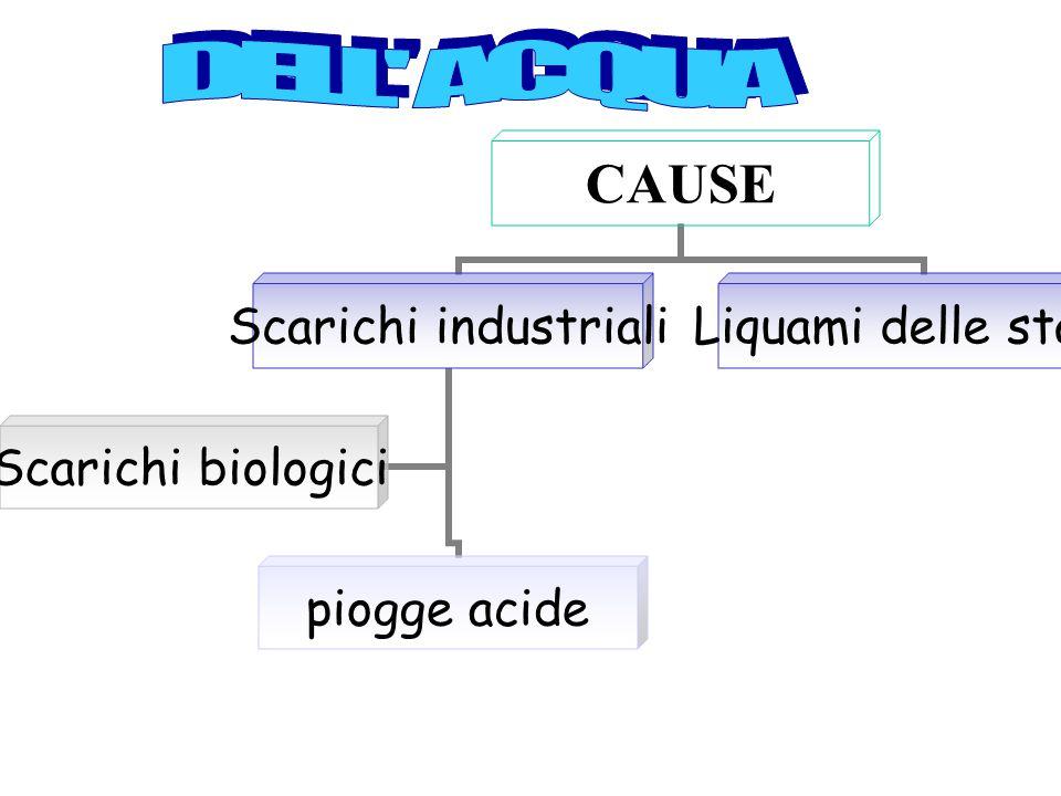 CAUSE Scarichi industriali piogge acide Scarichi biologici Liquami delle stalle