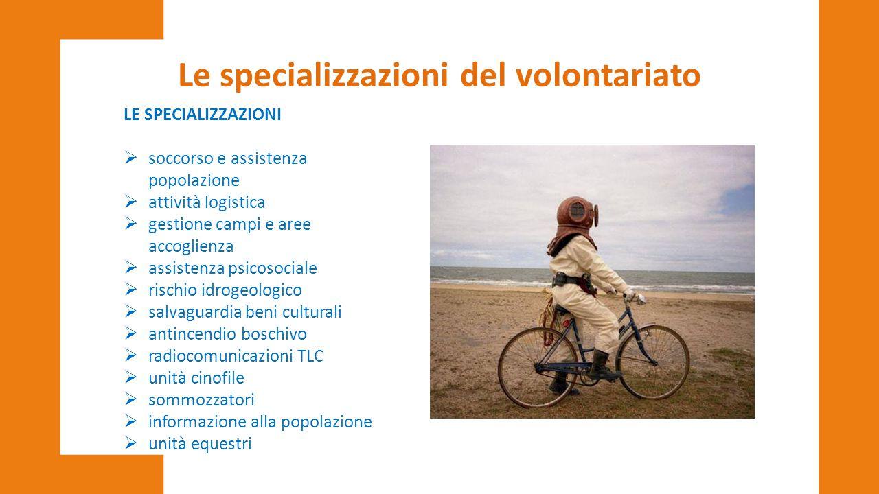 Le specializzazioni del volontariato LE SPECIALIZZAZIONI  soccorso e assistenza popolazione  attività logistica  gestione campi e aree accoglienza