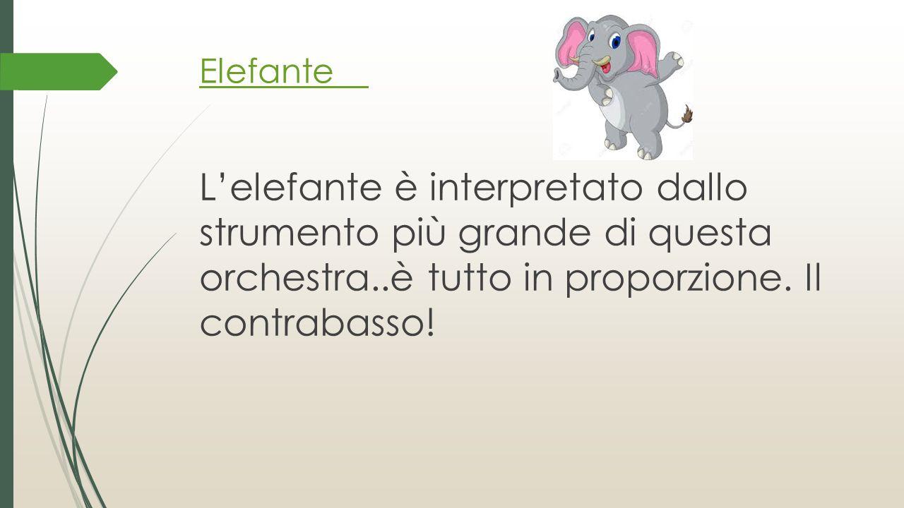 Elefante L'elefante è interpretato dallo strumento più grande di questa orchestra..è tutto in proporzione. Il contrabasso!