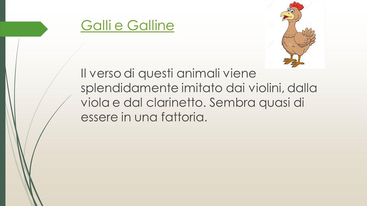 Galli e Galline Il verso di questi animali viene splendidamente imitato dai violini, dalla viola e dal clarinetto. Sembra quasi di essere in una fatto