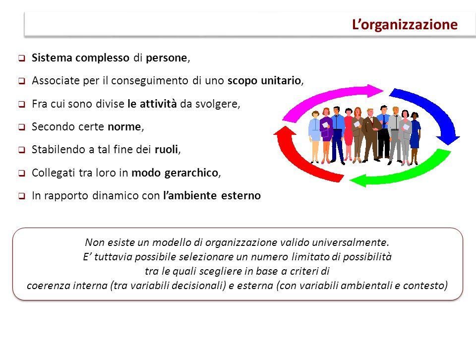  Sistema complesso di persone,  Associate per il conseguimento di uno scopo unitario,  Fra cui sono divise le attività da svolgere,  Secondo certe