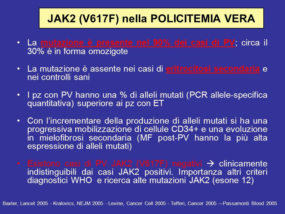JAK2 (V617F) nella POLICITEMIA VERA: Correlazioni cliniche: La presenza della mutazione V617F sembra associarsi a: –Sesso femminile –Maggior durata di malattia –Maggior incidenza di complicanze trombotiche e emorragiche (?) I pz omozigoti, rispetto agli eterozigoti presentano: –Più alti livelli di Hb alla diagnosi –Maggior incidenza di prurito –Maggior tasso di evoluzione in MF –Iperespressione di PRV-1 mRNA nei granulociti neutrofili Kralovics, NEJM 2005 – Levine, Cancer Cell 2005 - Tefferi, Cancer 2005 – Vannucchi, Blood 2007