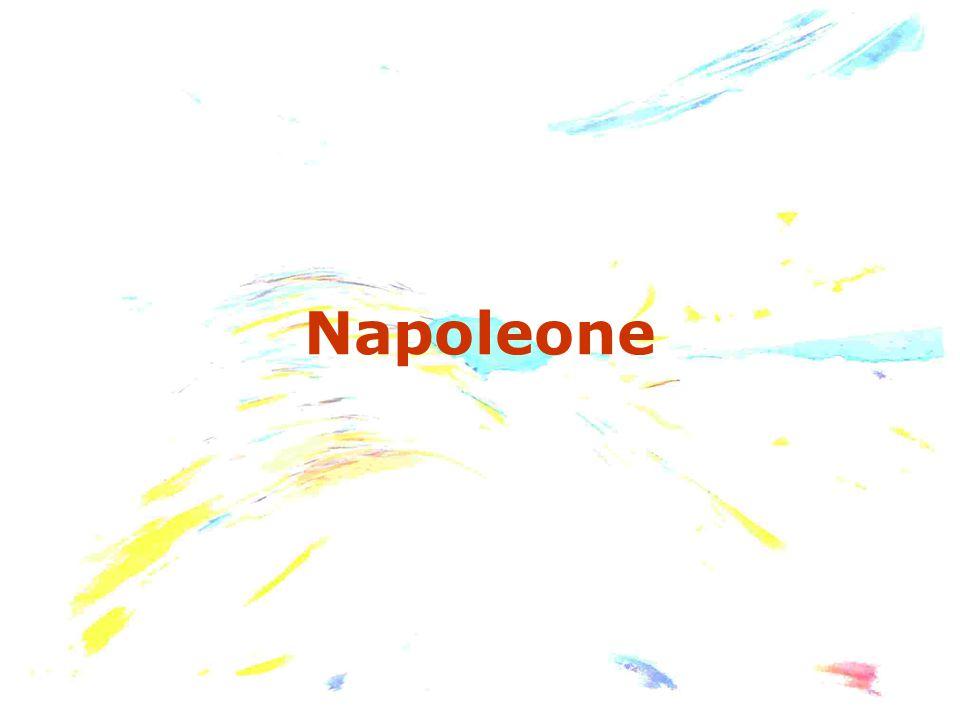 Il 18 brumaio Napoleone abbandona le truppe e rientra in Francia, ove si accorda con Sieyès per porre fine al Direttorio, incapace di difendere il paese.