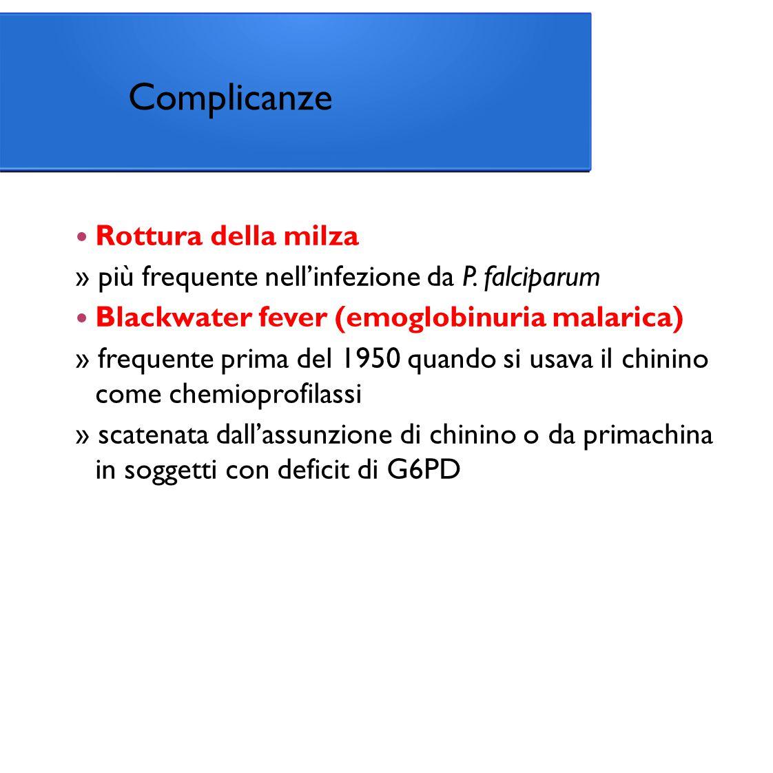 Complicanze Rottura della milza » più frequente nell'infezione da P.