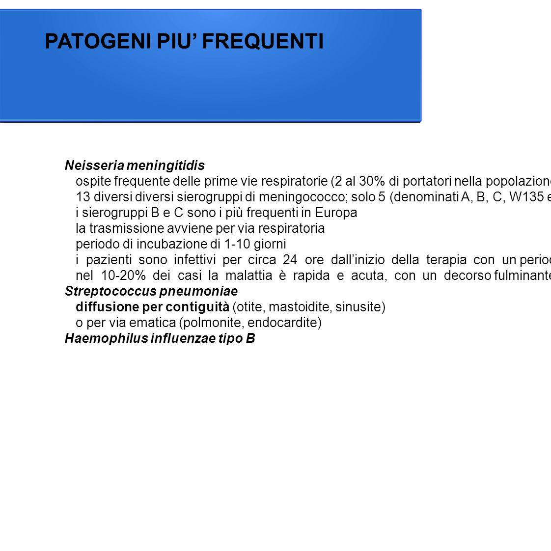 Neisseria meningitidis ospite frequente delle prime vie respiratorie (2 al 30% di portatori nella popolazione) 13 diversi diversi sierogruppi di meningococco; solo 5 (denominati A, B, C, W135 e Y) causano meningite e altre malattie gravi i sierogruppi B e C sono i più frequenti in Europa la trasmissione avviene per via respiratoria periodo di incubazione di 1-10 giorni i pazienti sono infettivi per circa 24 ore dall'inizio della terapia con un periodo di incubazione di 1-10 giorni nel 10-20% dei casi la malattia è rapida e acuta, con un decorso fulminante che può portare al decesso in poche ore nonostante una terapia adeguata.