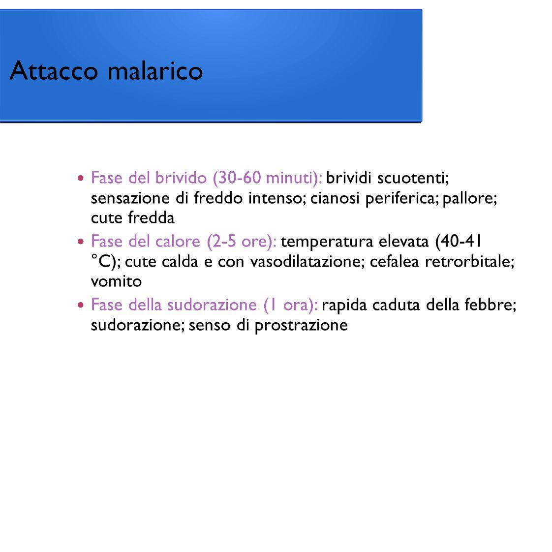 Fase del brivido (30-60 minuti): brividi scuotenti; sensazione di freddo intenso; cianosi periferica; pallore; cute fredda Fase del calore (2-5 ore): temperatura elevata (40-41 °C); cute calda e con vasodilatazione; cefalea retrorbitale; vomito Fase della sudorazione (1 ora): rapida caduta della febbre; sudorazione; senso di prostrazione Attacco malarico