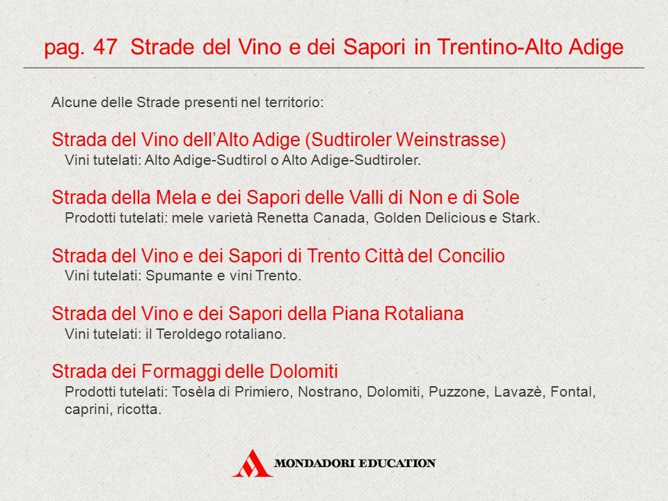 Alcune delle Strade presenti nel territorio: Strada del Vino dell'Alto Adige (Sudtiroler Weinstrasse) Vini tutelati: Alto Adige-Sudtirol o Alto Adige-