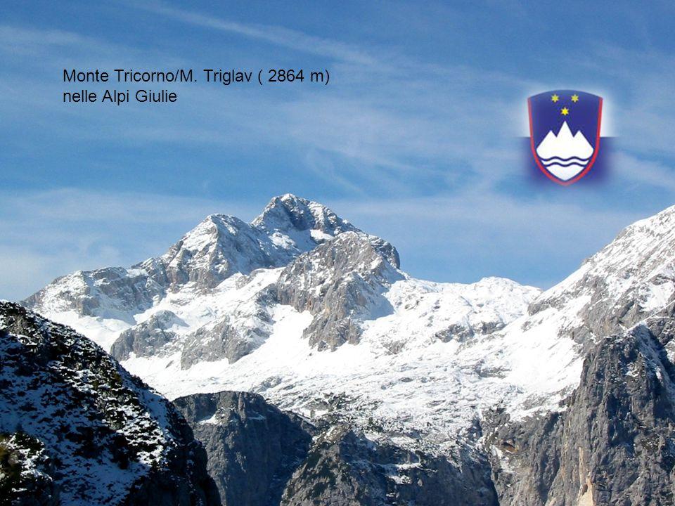 Monte Tricorno/M. Triglav ( 2864 m) nelle Alpi Giulie
