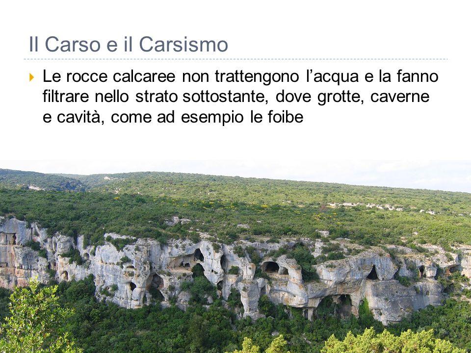 Il Carso e il Carsismo  Le rocce calcaree non trattengono l'acqua e la fanno filtrare nello strato sottostante, dove grotte, caverne e cavità, come a