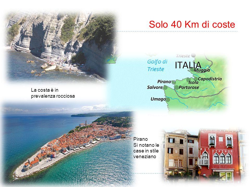 Solo 40 Km di coste Pirano Si notano le case in stile veneziano La costa è in prevalenza rocciosa