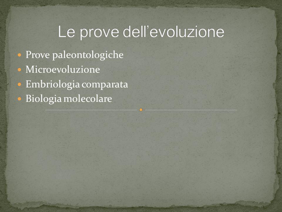 Prove paleontologiche Microevoluzione Embriologia comparata Biologia molecolare