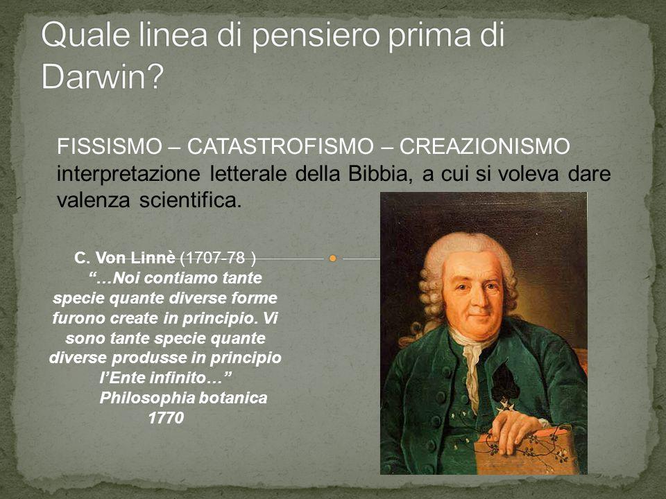 """FISSISMO – CATASTROFISMO – CREAZIONISMO interpretazione letterale della Bibbia, a cui si voleva dare valenza scientifica. C. Von Linnè (1707-78 ) """"…No"""