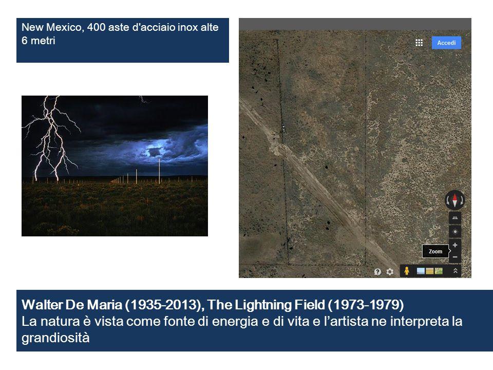 Walter De Maria (1935-2013), The Lightning Field (1973-1979) La natura è vista come fonte di energia e di vita e l'artista ne interpreta la grandiosit