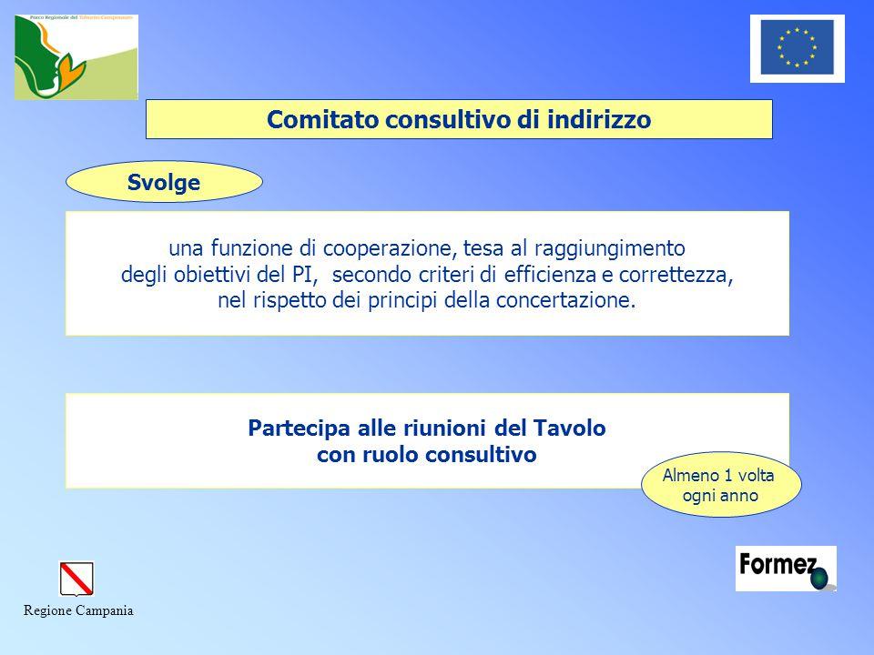 Regione Campania Svolge una funzione di cooperazione, tesa al raggiungimento degli obiettivi del PI, secondo criteri di efficienza e correttezza, nel rispetto dei principi della concertazione.