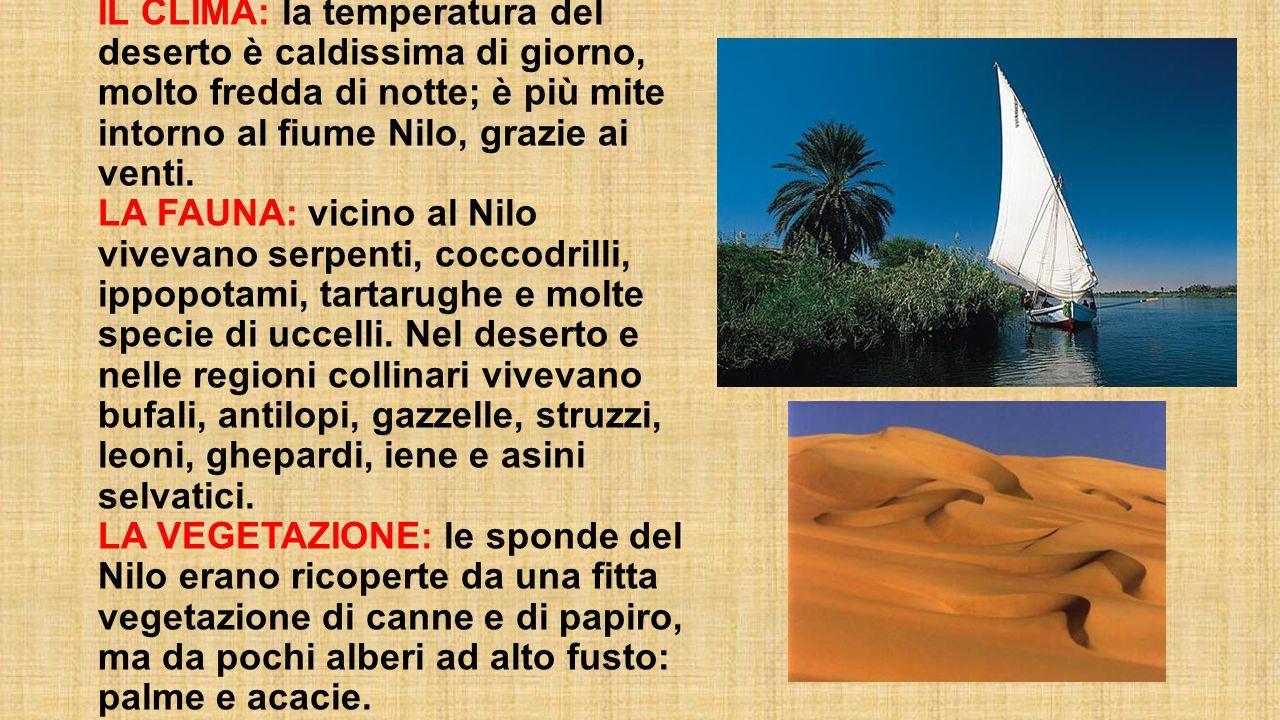 IL CLIMA: la temperatura del deserto è caldissima di giorno, molto fredda di notte; è più mite intorno al fiume Nilo, grazie ai venti. LA FAUNA: vicin