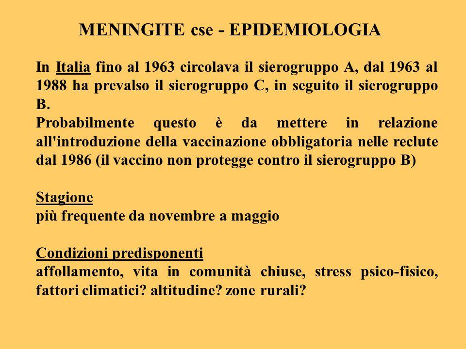 In Italia fino al 1963 circolava il sierogruppo A, dal 1963 al 1988 ha prevalso il sierogruppo C, in seguito il sierogruppo B. Probabilmente questo è