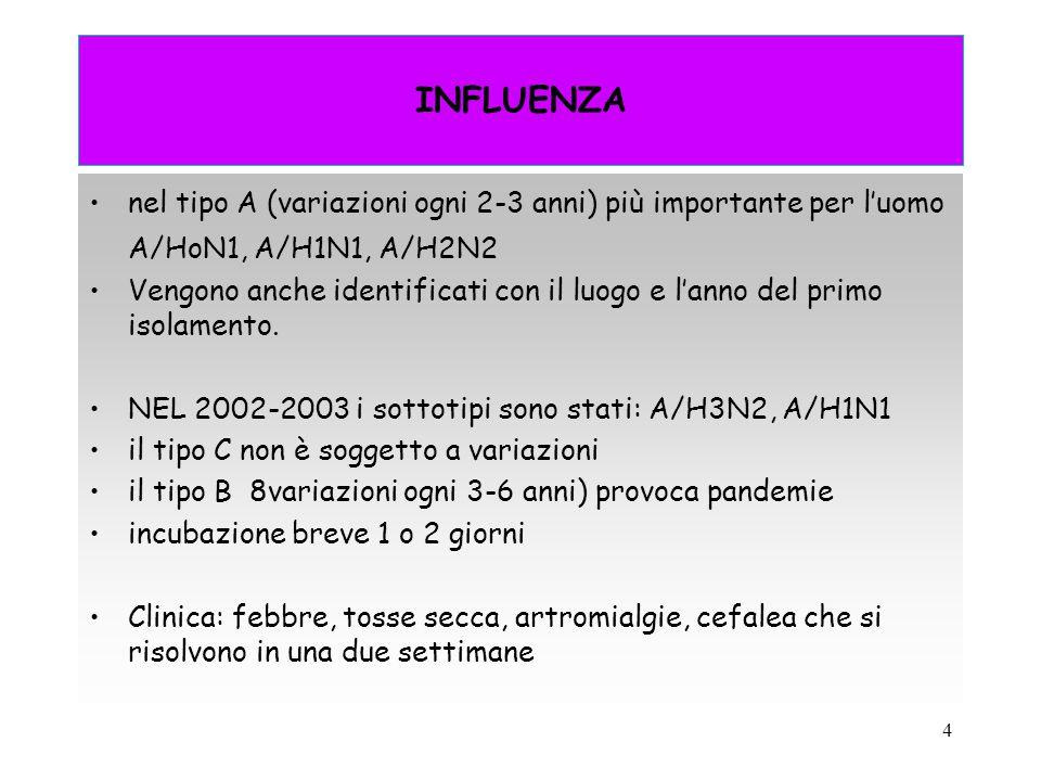 4 INFLUENZA nel tipo A (variazioni ogni 2-3 anni) più importante per l'uomo A/HoN1, A/H1N1, A/H2N2 Vengono anche identificati con il luogo e l'anno de