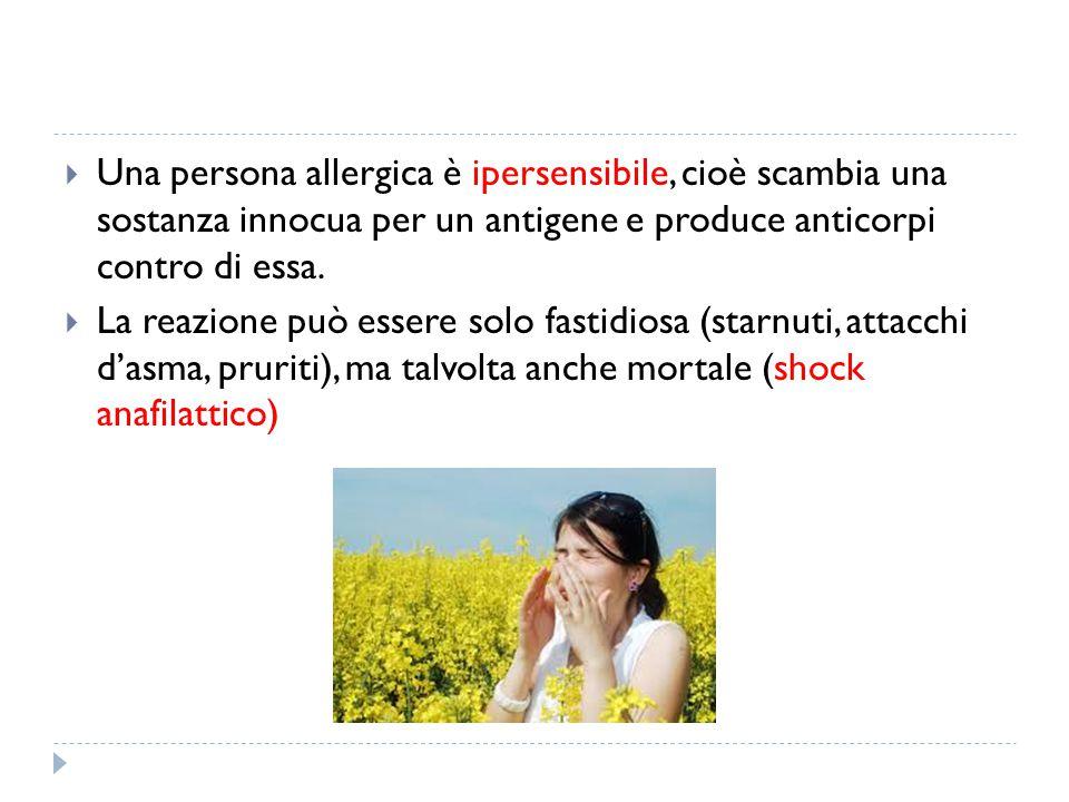  Una persona allergica è ipersensibile, cioè scambia una sostanza innocua per un antigene e produce anticorpi contro di essa.  La reazione può esser