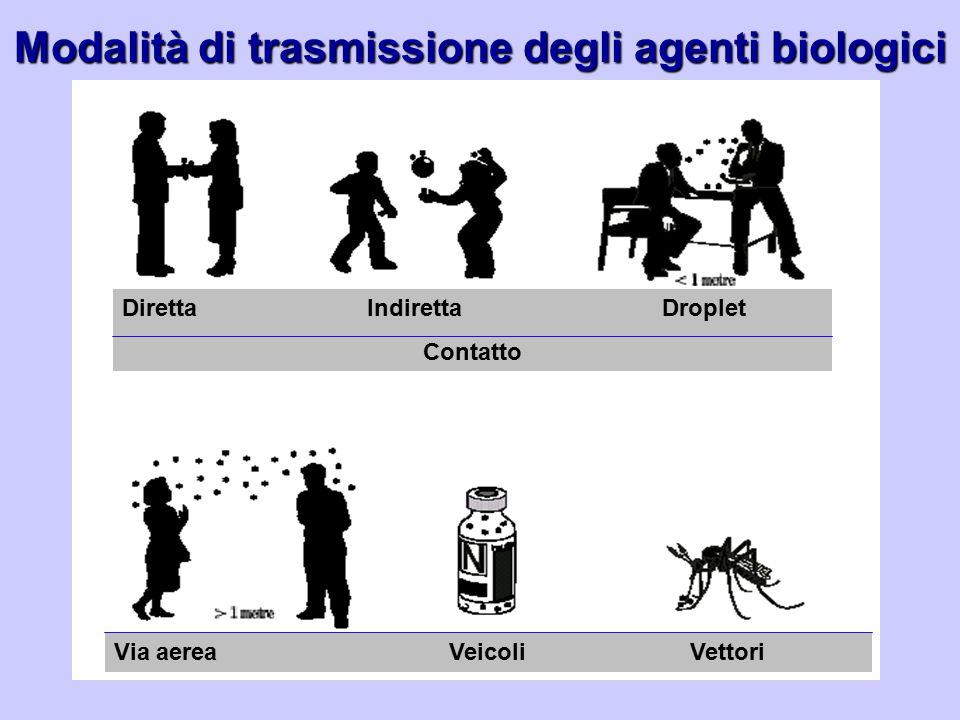 Modalità di trasmissione degli agenti biologici Diretta Indiretta Droplet Contatto Via aerea Veicoli Vettori