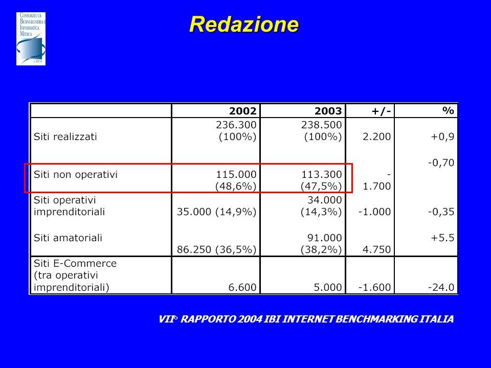 Redazione VII° RAPPORTO 2004 IBI INTERNET BENCHMARKING ITALIA