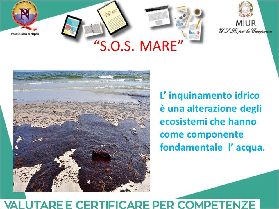 """L' inquinamento idrico è una alterazione degli ecosistemi che hanno come componente fondamentale l' acqua. """"S.O.S. MARE"""""""