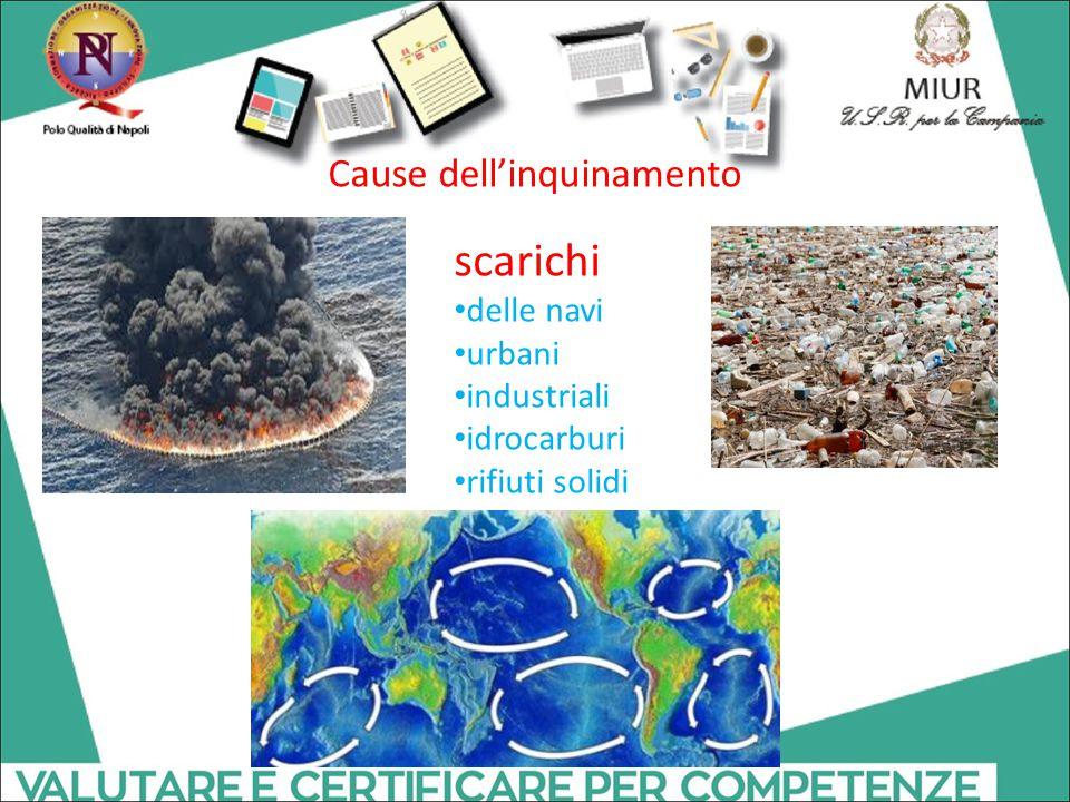 Cause dell'inquinamento scarichi delle navi urbani industriali idrocarburi rifiuti solidi