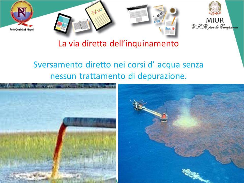 La via diretta dell'inquinamento Sversamento diretto nei corsi d' acqua senza nessun trattamento di depurazione.