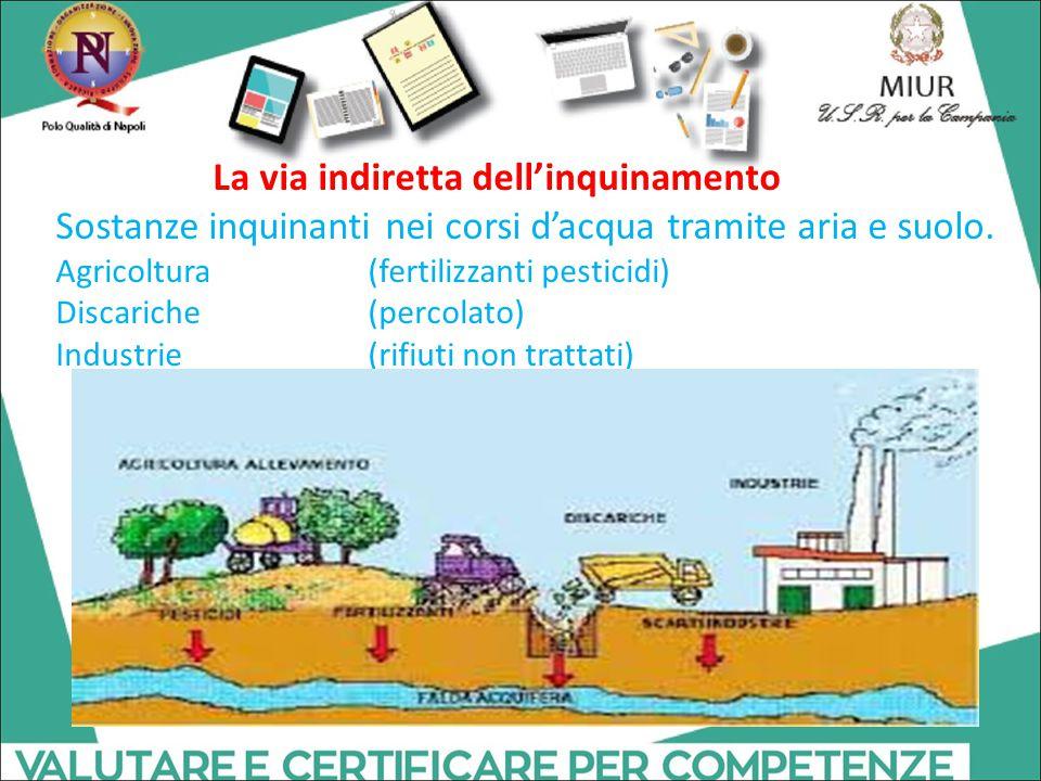 Sostanze inquinanti nei corsi d'acqua tramite aria e suolo. Agricoltura (fertilizzanti pesticidi) Discariche (percolato) Industrie(rifiuti non trattat