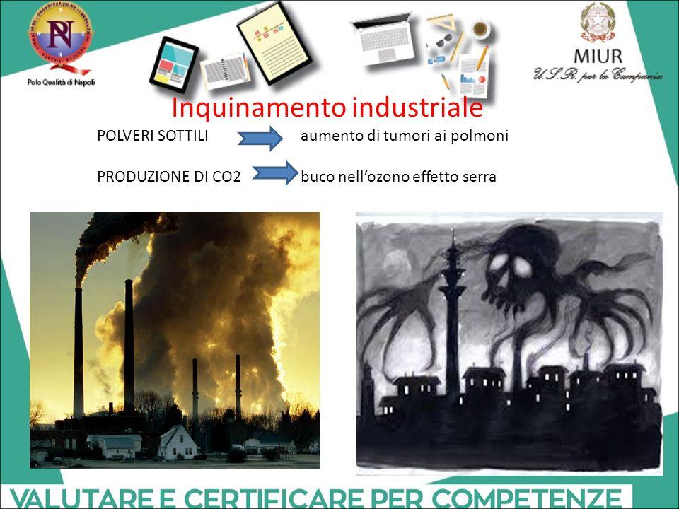 Inquinamento industriale POLVERI SOTTILI aumento di tumori ai polmoni PRODUZIONE DI CO2 buco nell'ozono effetto serra