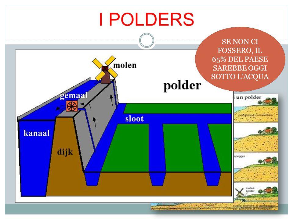 La creazione del Polder segna un importante passo in avanti nella relazione tra l'uomo e l'acqua in un periodo cruciale di espansione sociale ed econo
