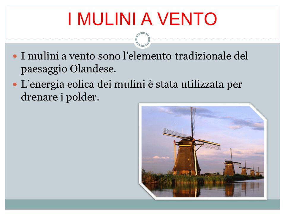 I mulini a vento sono l'elemento tradizionale del paesaggio Olandese. L'energia eolica dei mulini è stata utilizzata per drenare i polder. I MULINI A