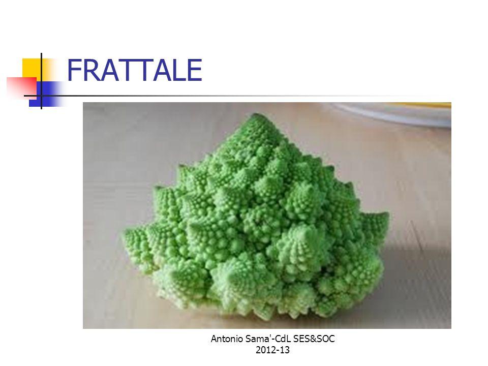 FRATTALE Antonio Sama -CdL SES&SOC 2012-13