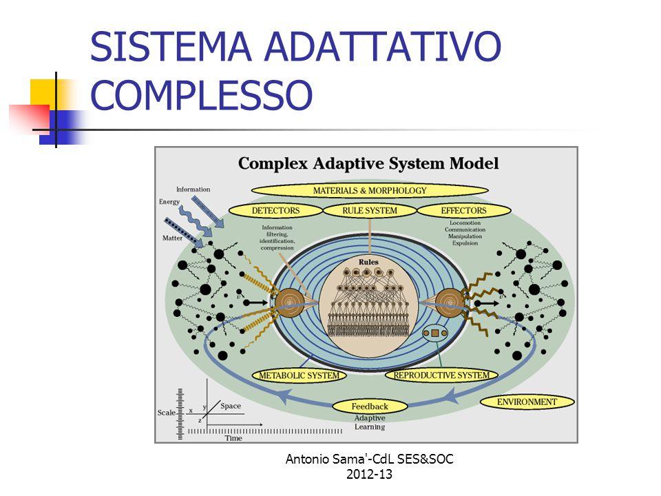 SISTEMA ADATTATIVO COMPLESSO Antonio Sama -CdL SES&SOC 2012-13