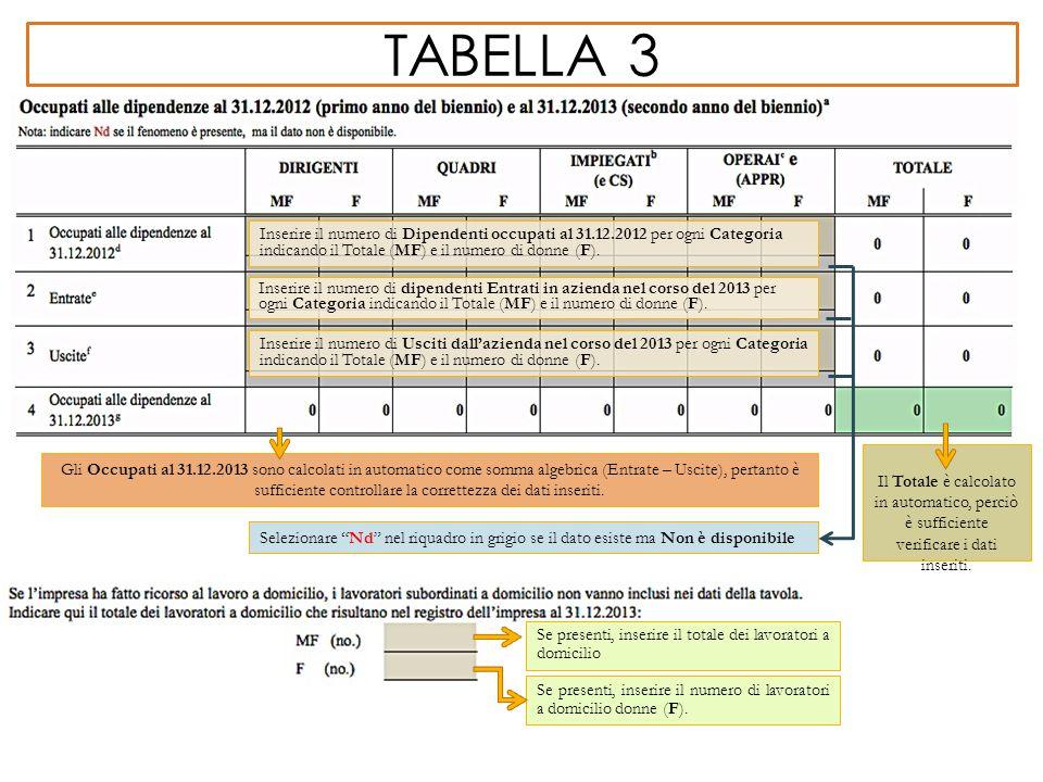 TABELLA 3 Gli Occupati al 31.12.2013 sono calcolati in automatico come somma algebrica (Entrate – Uscite), pertanto è sufficiente controllare la corre