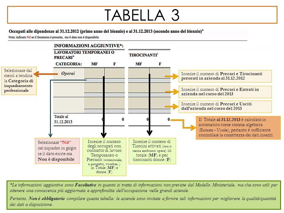 TABELLA 3 *Le informazioni aggiuntive sono Facoltative in quanto si tratta di informazioni non previste dal Modello Ministeriale, ma che sono utili pe