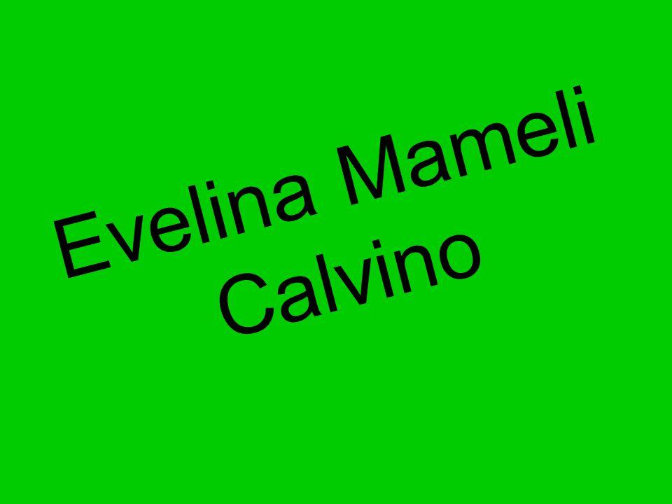Eva Mameli Calvino, all anagrafe Giuliana Luigia Evelina Mameli (Sassari, 12 febbraio 1886-Sanremo, 31 marzo 1978), è stata una botanica e naturalista italiana.