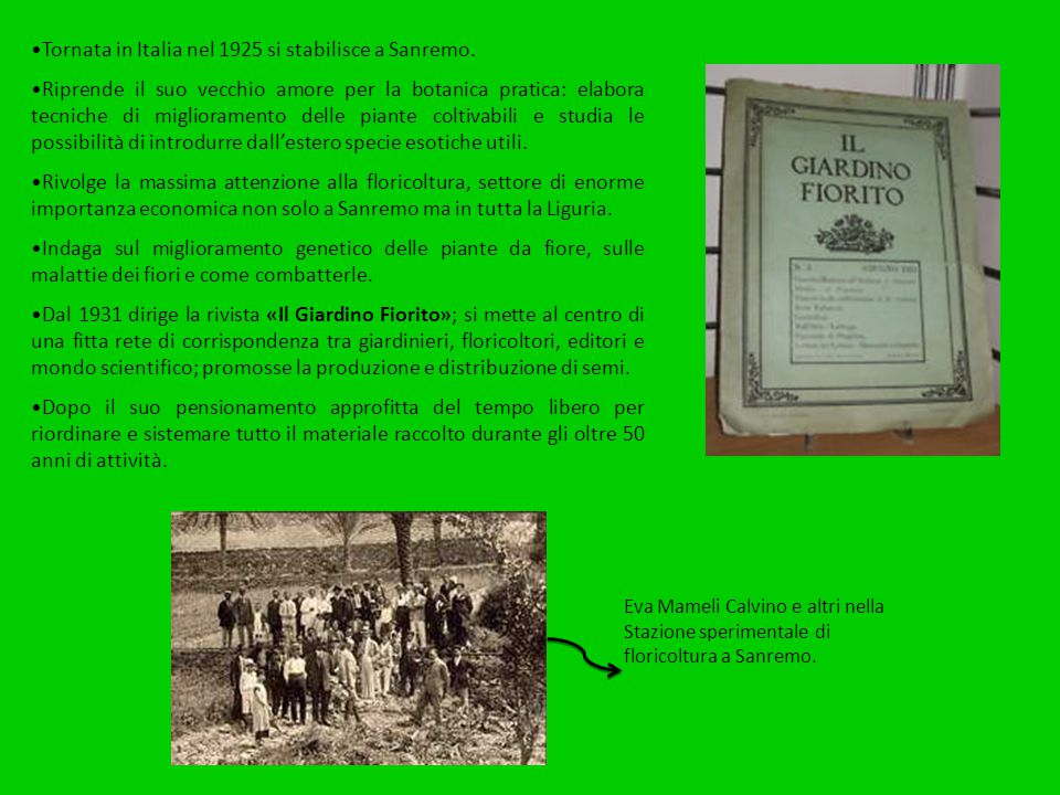Tornata in Italia nel 1925 si stabilisce a Sanremo. Riprende il suo vecchio amore per la botanica pratica: elabora tecniche di miglioramento delle pia