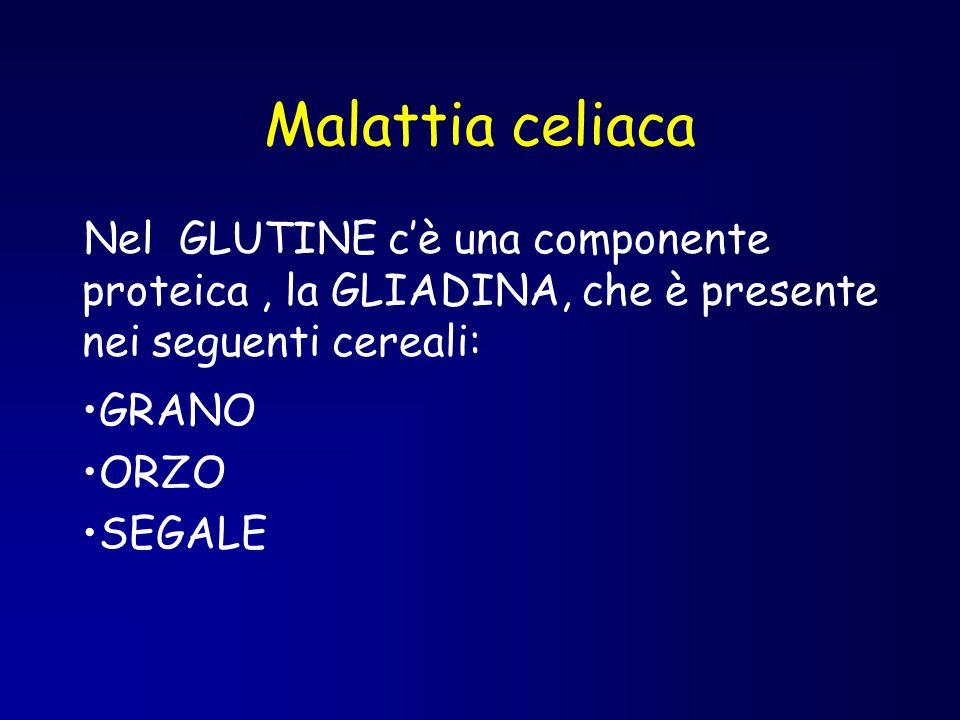 Malattia celiaca Nel GLUTINE c'è una componente proteica, la GLIADINA, che è presente nei seguenti cereali: GRANO ORZO SEGALE