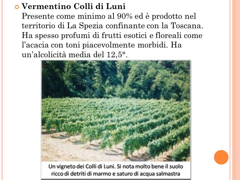 Vermentino Colli di Luni Presente come minimo al 90% ed è prodotto nel territorio di La Spezia confinante con la Toscana.