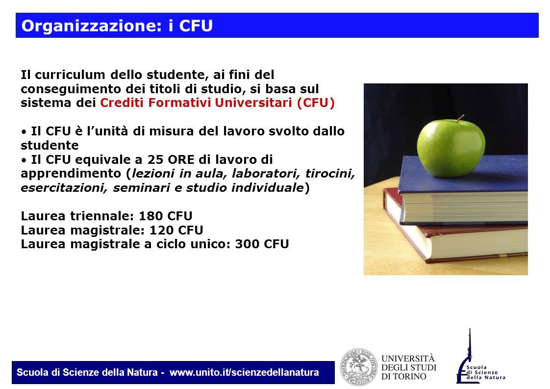 Scuola di Scienze della Natura - www.unito.it/scienzedellanatura Organizzazione: i CFU Il curriculum dello studente, ai fini del conseguimento dei tit