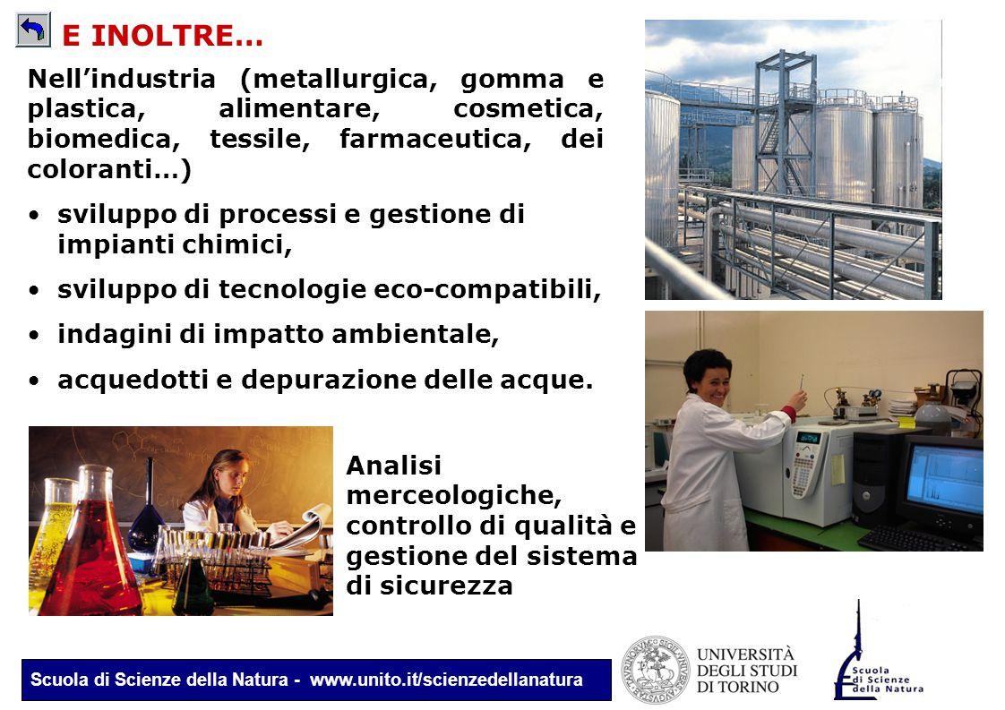Scuola di Scienze della Natura - www.unito.it/scienzedellanatura Nell'industria (metallurgica, gomma e plastica, alimentare, cosmetica, biomedica, tes