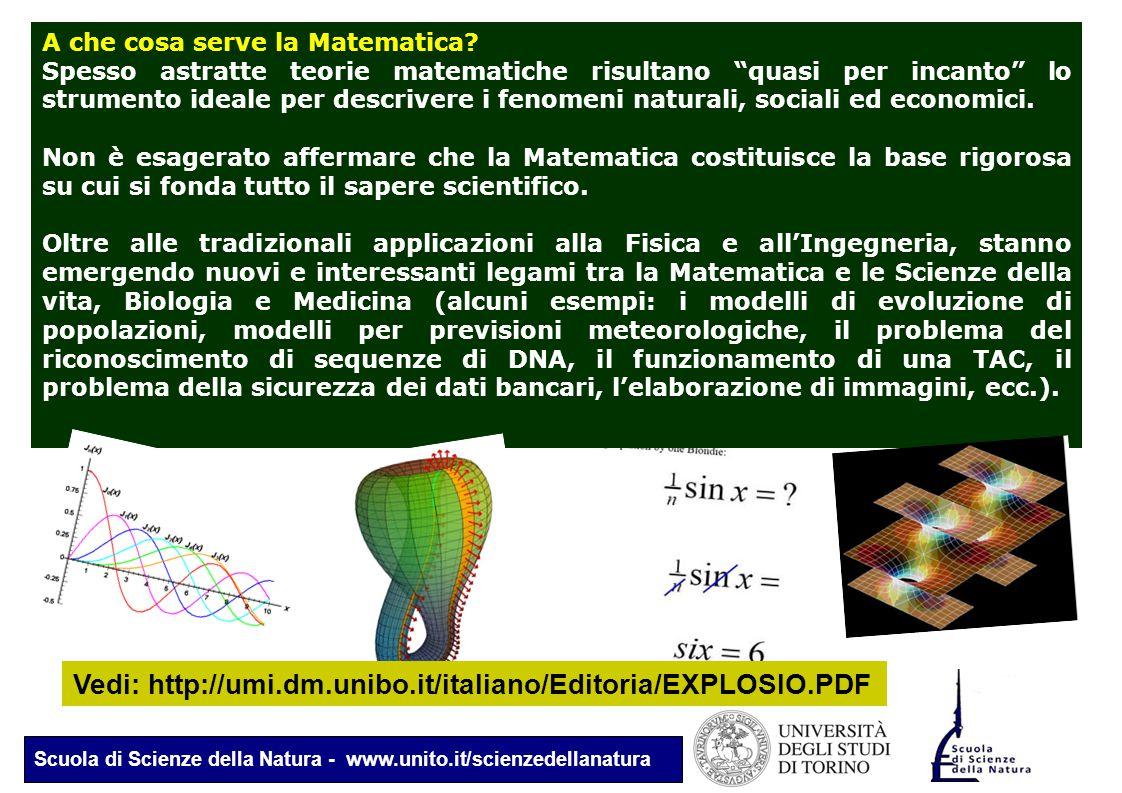 """Scuola di Scienze della Natura - www.unito.it/scienzedellanatura A che cosa serve la Matematica? Spesso astratte teorie matematiche risultano """"quasi p"""