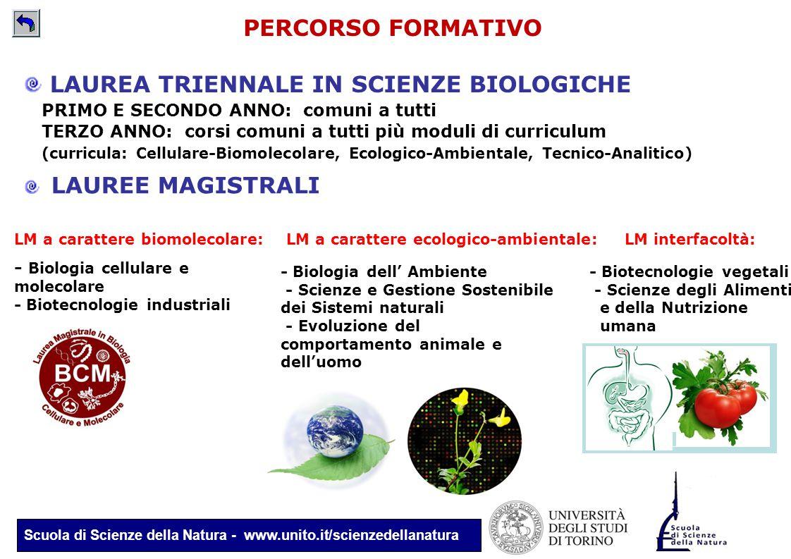 Scuola di Scienze della Natura - www.unito.it/scienzedellanatura PERCORSO FORMATIVO LAUREA TRIENNALE IN SCIENZE BIOLOGICHE PRIMO E SECONDO ANNO: comun
