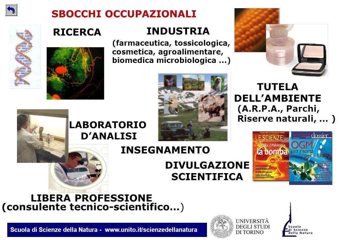 Scuola di Scienze della Natura - www.unito.it/scienzedellanatura (farmaceutica, tossicologica, cosmetica, agroalimentare, biomedica microbiologica...)