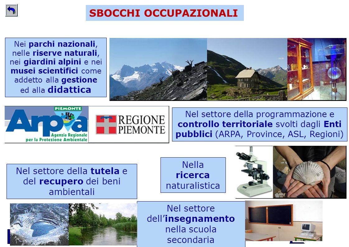 Scuola di Scienze della Natura - www.unito.it/scienzedellanatura SBOCCHI OCCUPAZIONALI Nella ricerca naturalistica Nei parchi nazionali, nelle riserve