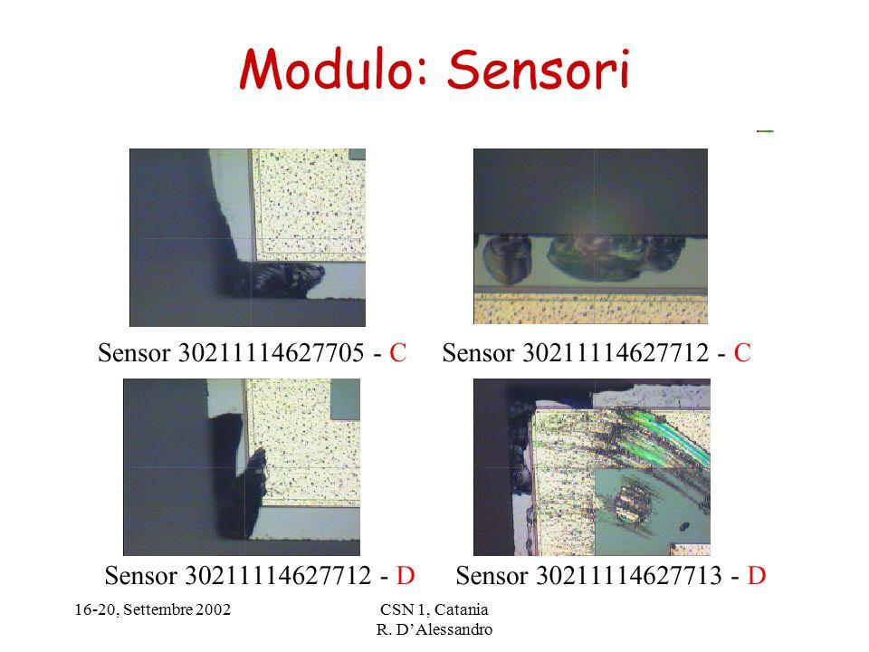 16-20, Settembre 2002CSN 1, Catania R. D'Alessandro Modulo: Sensori