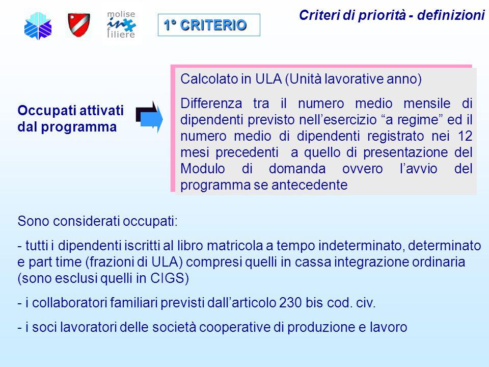 Criteri di priorità - definizioni 1° CRITERIO Occupati attivati dal programma Calcolato in ULA (Unità lavorative anno) Differenza tra il numero medio